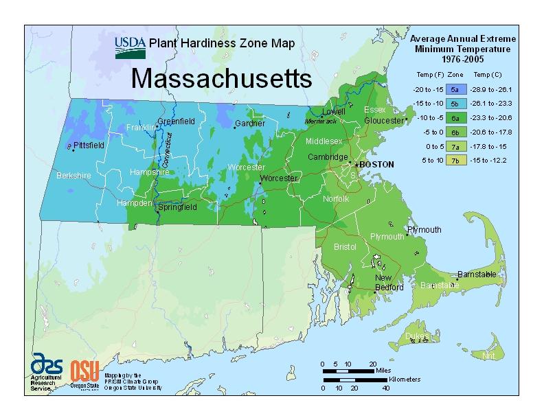 Hardiness ma Map Image