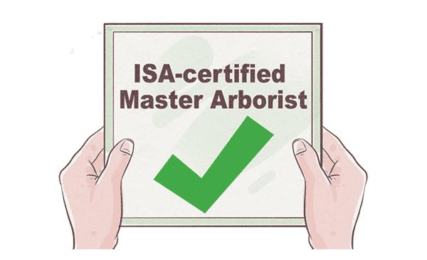 qualified arborist ticket