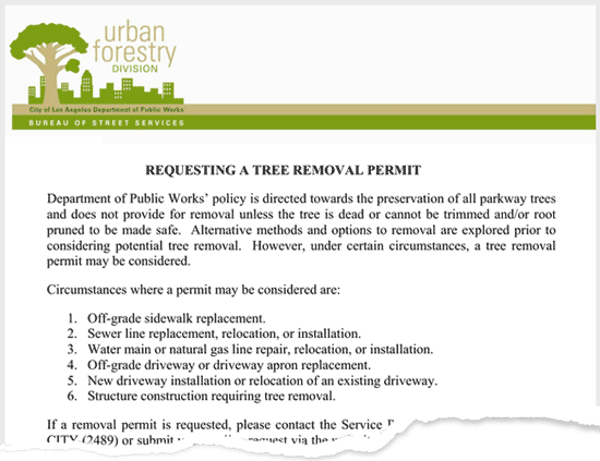 tree-removal-permit-example