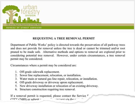 tree removal permit example