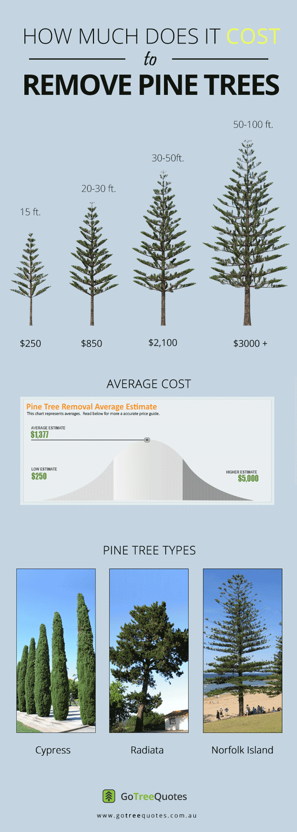 PINE-TREE-REMOVAL-COST-INFOGRAPHIC
