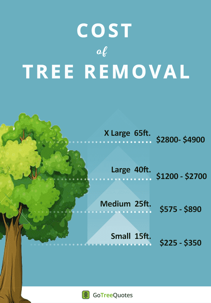 Tree Removal Cost 2021 Guide Prices To Cut Down Trees By Size