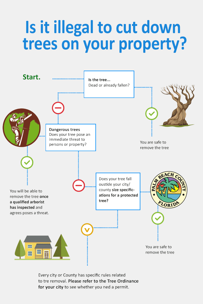 is-it-illegal-to-cut-down-a-tree-on-your-property-infographic