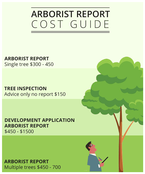 How Much Does An Arborist Cost Go Tree Quotes