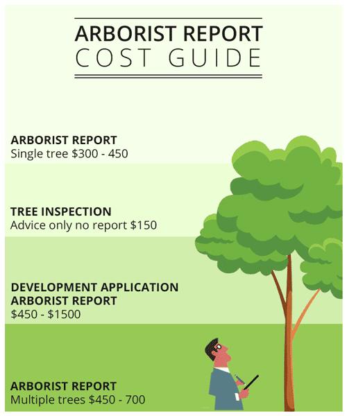 arborist-report-cost-guide