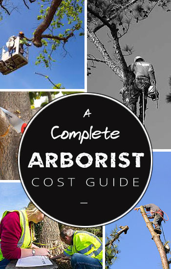 arbotist-cost-guide-side-bar