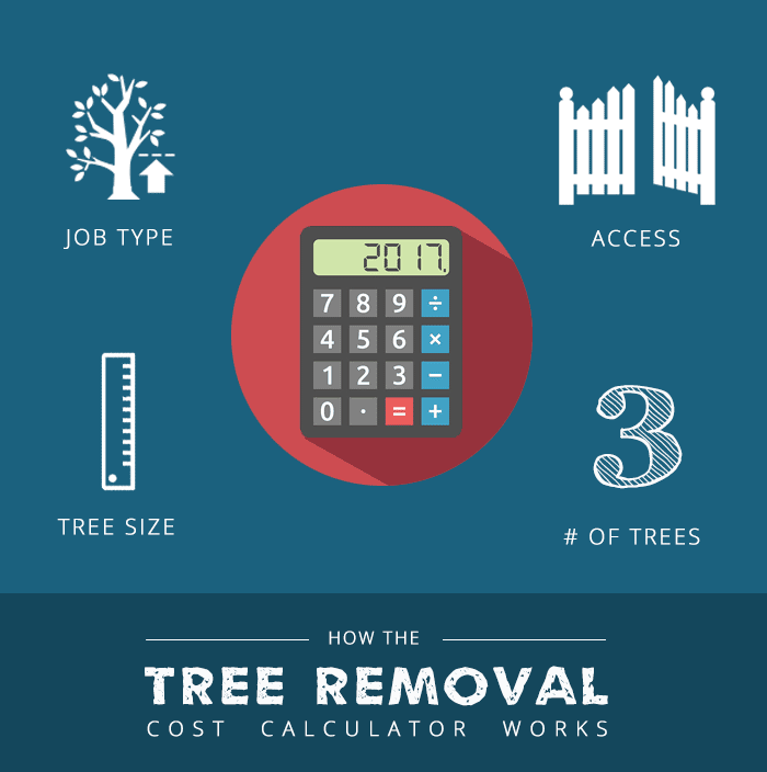 how-the-tree-removal-cost-calculator-works1