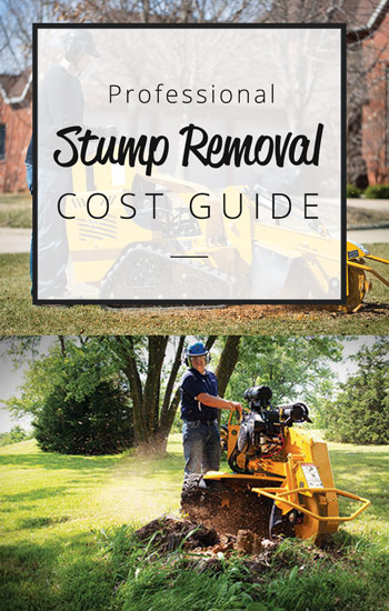 stump-removal-cost-guide-350--x-550side