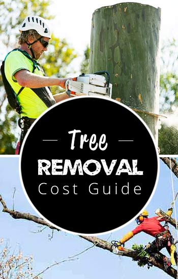 tree-removal-cost-guide2-USA