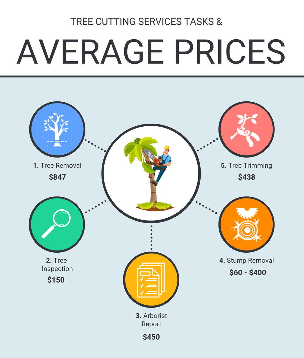 TREE CUTTING SERVICE TASKS AND AVERAGE PRICES INFOGRAPHIC