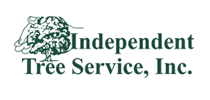 Independent-tree-service-Tampa-fl-logo