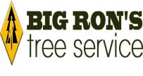 big rons