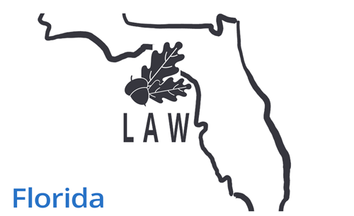 florida-map-oak-tree-laws-vector-image