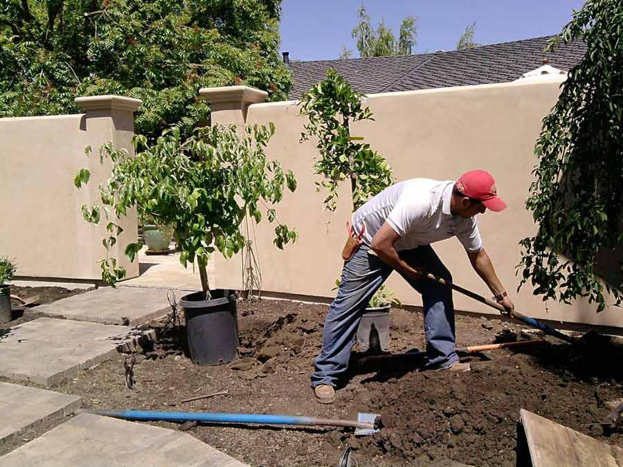 landscaping-company-creating-garden
