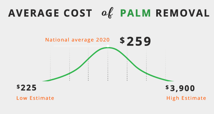 palm removal average cost 2020