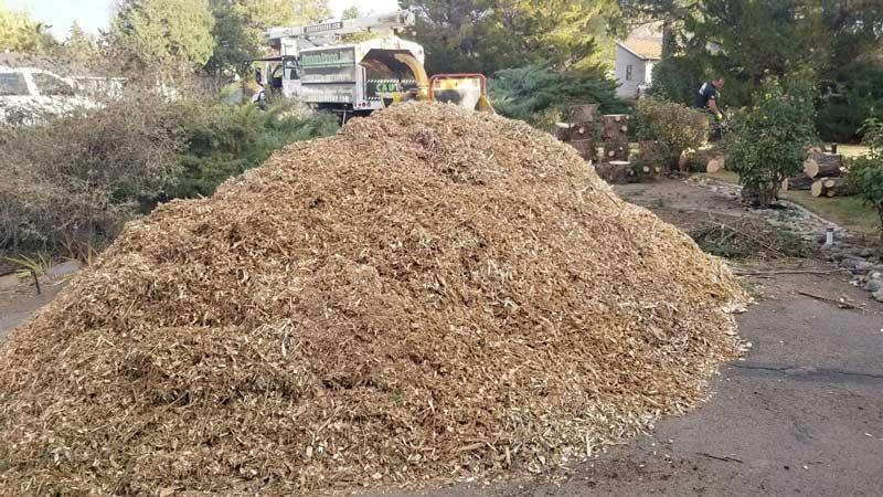 pile-of-mulch