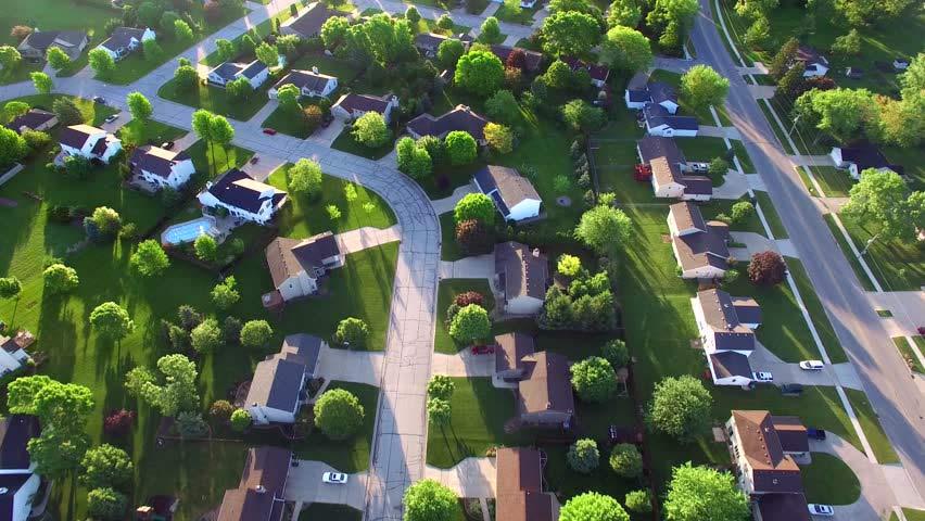 urban-forest2