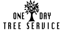 1.One Day Tree Service