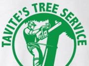 Tavite'sTree Service