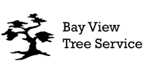 bayviewtreeservice