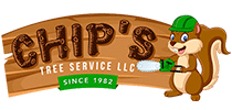 chipstreeservice