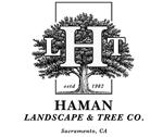 hamantreeservice