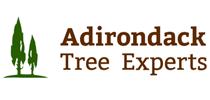 adirondacktreeexperts
