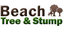 beachtreeandstumpva
