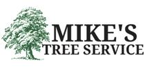 mikestreevb