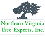 northernvirginiatreeexperts