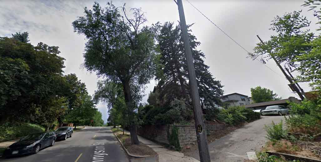 Permit to remove tree in Colorado Springs
