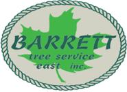 barretttreeeast