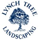 lynchlandscape