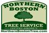 northernbostontree