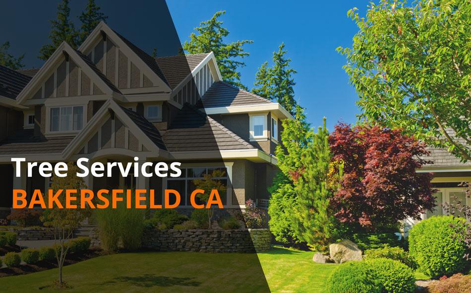 Tree Services Bakersfield California