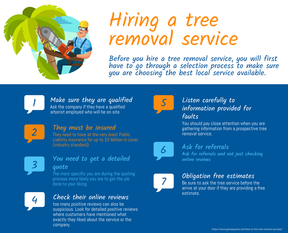 Hiring tree removal services infographic