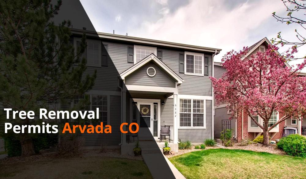 Tree removal permit Arvada
