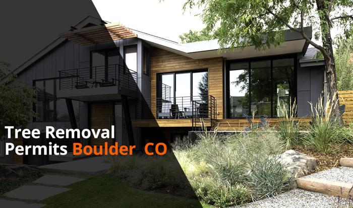 Tree removal permit Boulder
