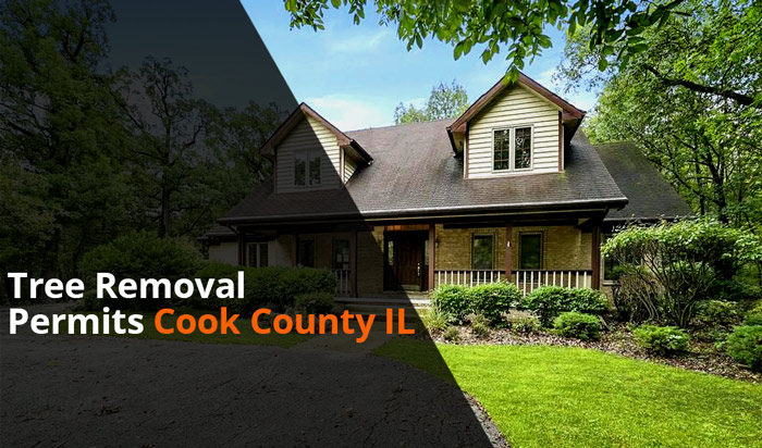 Tree removal permit Cook Country