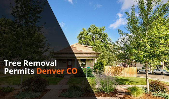Tree removal permit Denver