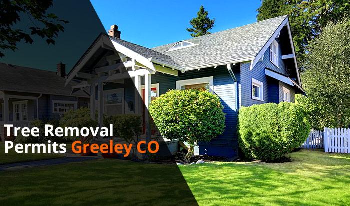Tree removal permit Greeley