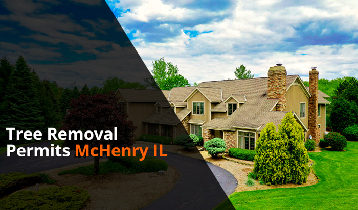 Tree removal permit McHenry