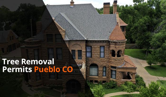 Tree removal permit Pueblo