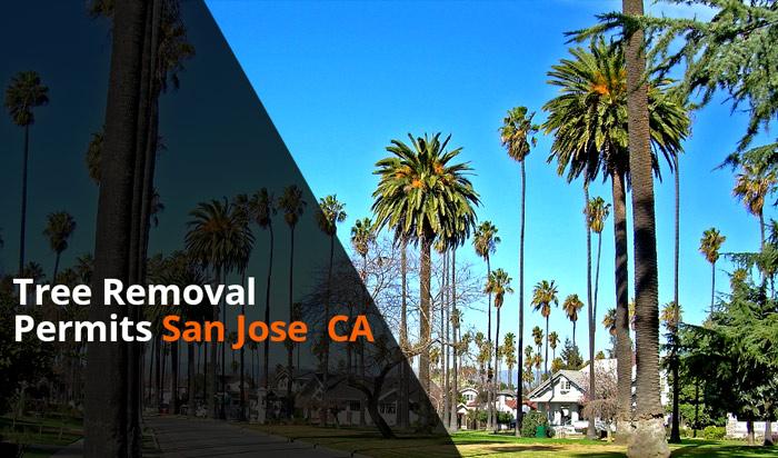 Tree removal permit San Jose