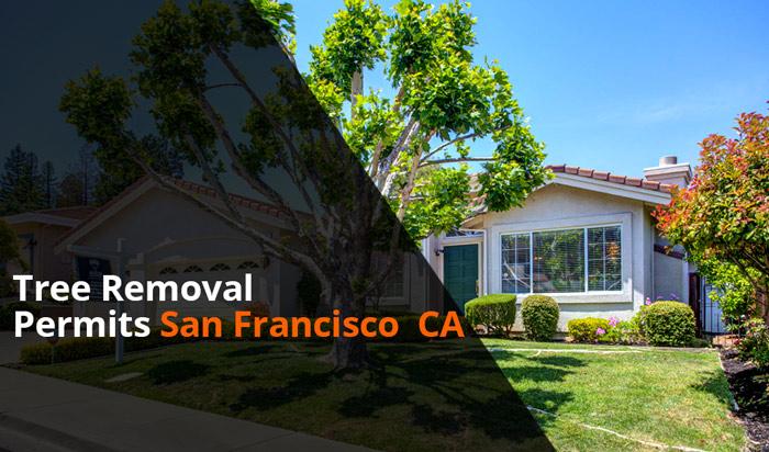 Tree removal permit SanFrancisco