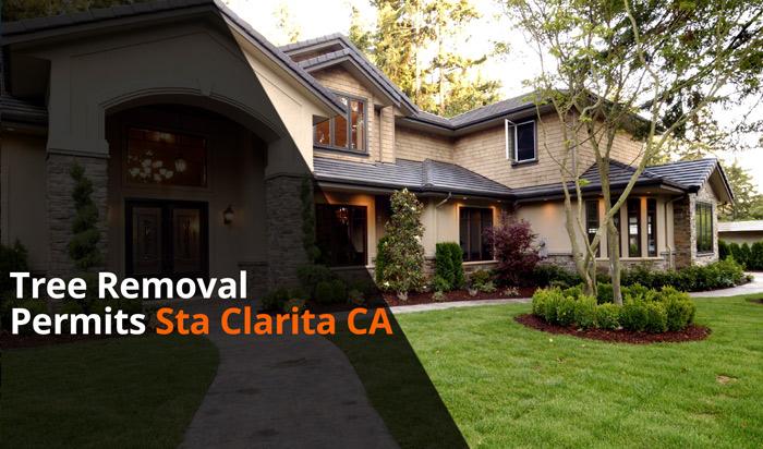 Tree removal permit Santa Clarita