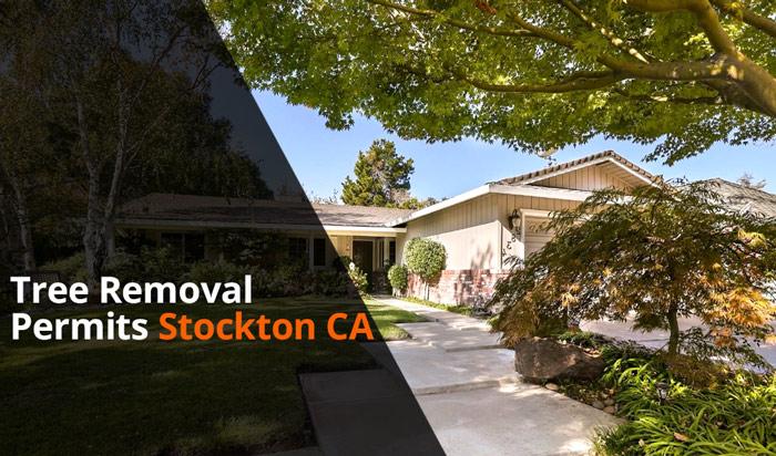 Tree removal permit Stockton