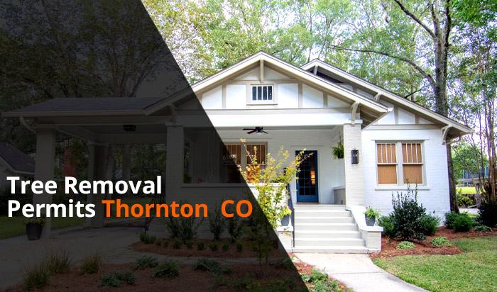 Tree removal permit Thornton