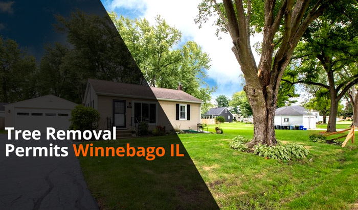 Tree removal permit Winnebago