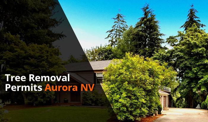 Tree removal permit aurora